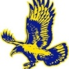 Dalkeith Nedlands Eagles Yr4s Logo