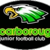 Scarborough Sea Eagles Yr4s Gold Logo