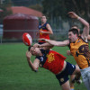 Round 9 Seniors Diggers v Woodend 15.6.2013