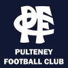 Pulteney Logo