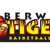 Berwick Tigers Logo