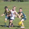 Under 8 White V Maroochy 4.8.13