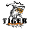 San Pedro Tigersharks