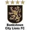 Bankstown City FC
