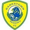 Bankstown Berries FC