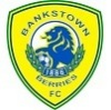 Bankstown Berries FC Logo