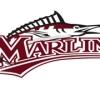 Marlins G13 Logo