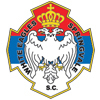 Springvale White Eagles FC Logo