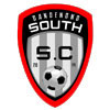 Dandenong South SC Logo