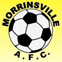 Morrinsville Mens D