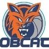 Peninsula Bobcats U/08.3 Logo