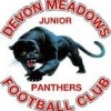 Devon Meadows U14 Girls Logo
