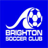 Brighton Turtles Logo