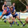 2014 Round 7 - Vs East Ringwood (Seniors)