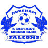 Horsham & District SC Logo