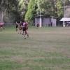 U2014/06/15 Vets vs Woori Yallock (H)