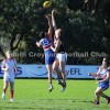 2014 Round 10 - Vs Norwood (U19's)