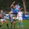 2014 Round 10 - Vs Norwood (Seniors)