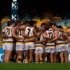 NEAFL v Lions at Gabba 2014
