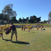 NRL Ipswich Holiday Clinic 2014