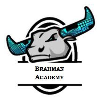 Brahman Academy Logo