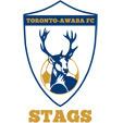 Toronto Awaba FC