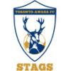 Toronto Awaba FC Logo