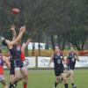 2014 Croydon v Mulgrave Round 14