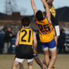 2014 JUNIOR GRAND FINAL SHOTS