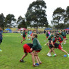 2014 BDS Rugby League