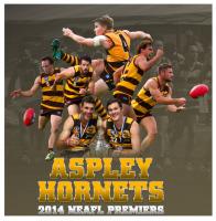 Aspley Hornets AFC