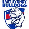 East Sydney U13 Div 1 Logo