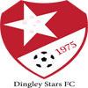 Dingley Stars FC Logo