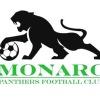 Monaro Panthers FC Logo