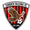CAMDEN FALCONS UNDER 6 BLACK Logo