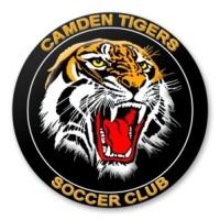 CAMDEN TIGERS U6 PURPLE