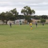 Reserves v Altona North