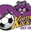 Kootingal Kougars 16's Logo