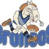 Chittering Y5 Blue Logo