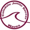 Coledale W4 Logo