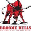 Broome Bulls Logo