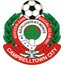 Campbelltown City Logo