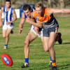 2015 Round 7 Sea Lake Nandaly Tigers v Woomelang Lascelles (photo by Carol Elliott)
