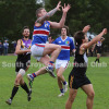 2015 Round 8 - Vs Norwood (Seniors)
