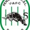 Penshurst Panthers U15-3 Logo