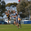 2015 Round 11 Sea Lake Nandaly Tigers v Southern Mallee Giants (photo by Carol Elliott)