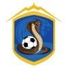 Te Aroha Cobras Terrors 12 Logo