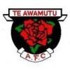Te Awamutu AFC Mens A Logo