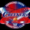 U12 Girls Diamond Creek 2 Logo