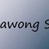 Illawong SC